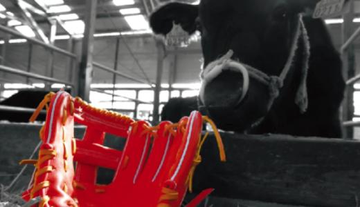 宮崎和牛を最適化する型付け方法を習得「ウォータースチーム型付け」とは?
